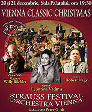 Vienna Classic Christmas - Bilete