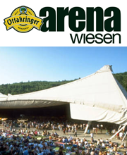 wiesen arena