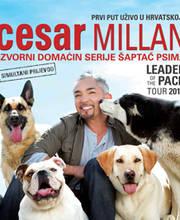 Cesar Millan - Ulaznice - ©