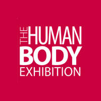 The Human Body - Az emberi test killts - Ulaznice e Human Body Killts 2012 Jegyek