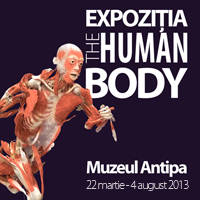 The Human Body Exhibition - Tickets ©