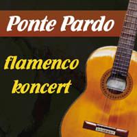 flamenco_200x200