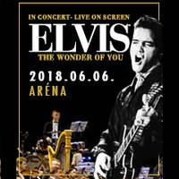Elvis - The Wonder of You - Jegyek Elvis20171©